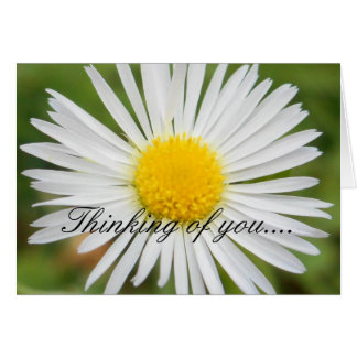 Daisy 'Someone is Thinking of You' Note Card