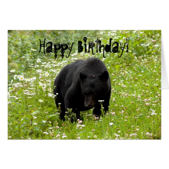 Daisy The Black Bear; Happy Birthday Card