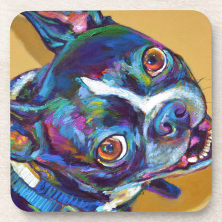 Daisy the Boston Terrier by Robert Phelps Beverage Coasters