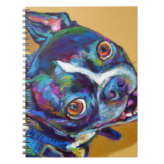 Daisy the Boston Terrier by Robert Phelps Notebook