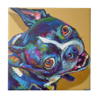 Daisy the Boston Terrier by Robert Phelps Tile