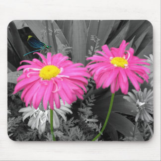 Daisys and Dragonflys Mouse Pad