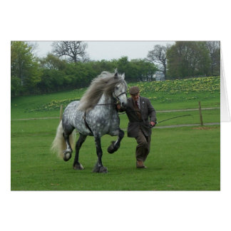 Dales Pony card