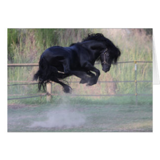 Dales Pony Jump Note card