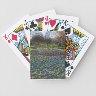Dallas Arboretum and Botanical Gardens flower bed Bicycle Playing Cards