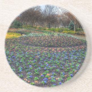Dallas Arboretum and Botanical Gardens flower bed Drink Coaster