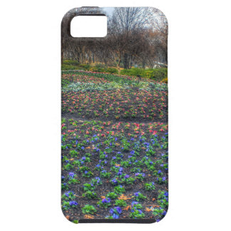 Dallas Arboretum and Botanical Gardens flower bed iPhone 5 Cover