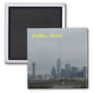 Dallas magnets` magnet