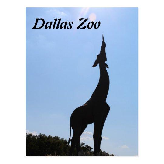 Dallas Zoo Postcard