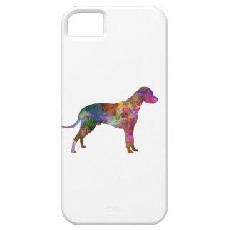 Dalmatian 01 in watercolor 2 iPhone 5 cases