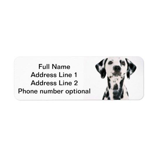 Dalmatian Address sticker