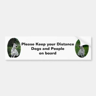 Dalmatian Art Dogs in car warning Bumper Sticker
