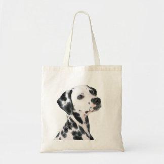 Dalmatian dog beautiful photo, gift