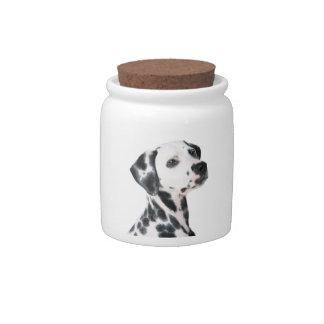 Dalmatian dog beautiful photo, gift candy jars