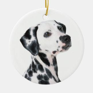 Dalmatian dog beautiful photo, gift ceramic ornament