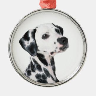 Dalmatian dog beautiful photo, gift metal ornament