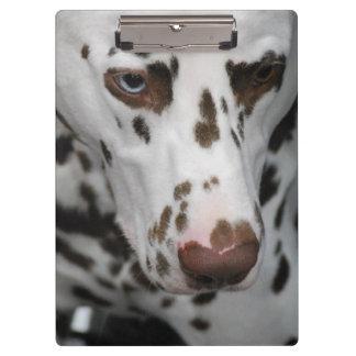 Dalmatian Dog Clipboard