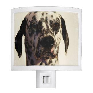Dalmatian Dog Night Light