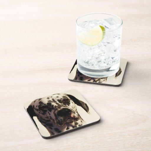 Dalmatian Dog Cork Coasters