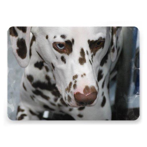 Dalmatian Dog Invites