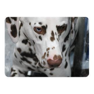 Dalmatian Dog 5x7 Paper Invitation Card