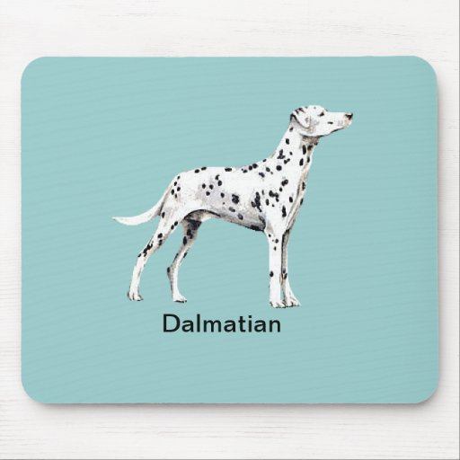 Dalmatian Dog - Mouse Pad