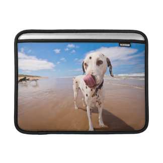 Dalmatian Dog On Beach Sleeve For MacBook Air