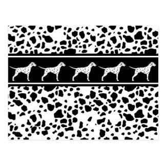 Dalmatian dog pattern postcard