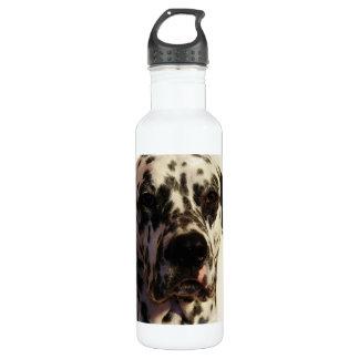 Dalmatian Dog 24oz Water Bottle