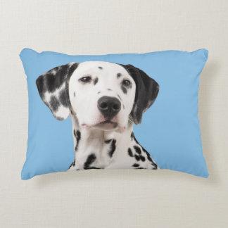 Dalmatian dog portrait on blue pillow