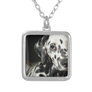 Dalmatian dog, pretty lookking silver plated necklace