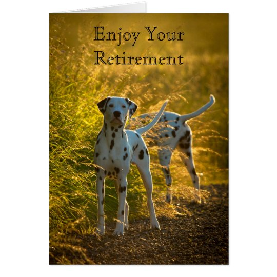 Dalmatian Dogs Enjoy Your Retirement Card