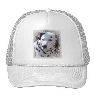 Dalmatian Fire Dog Baseball Cap Mesh Hat