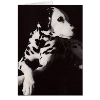 Dalmatian in Black and White Card