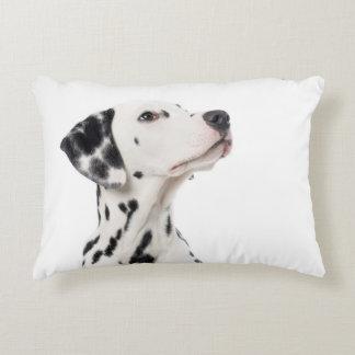 Dalmatian in blue accent pillow