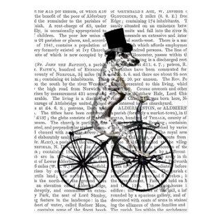 Dalmatian on Bicycle 2 Postcard