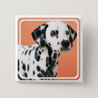 Dalmatian Puppies Square Pin