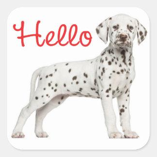 Dalmatian Puppy Dog Black White Spots Red Hello Square Sticker