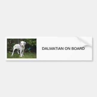 Dalmatian puppy dog, BUMPER STICKER Car Bumper Sticker