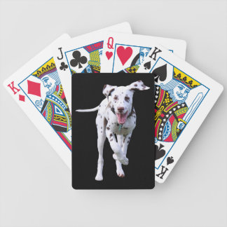 Dalmatian puppy dog cute beautiful photo, gift bicycle playing cards