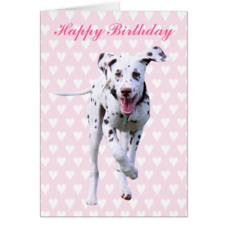 Dalmatian puppy dog happy birthday card