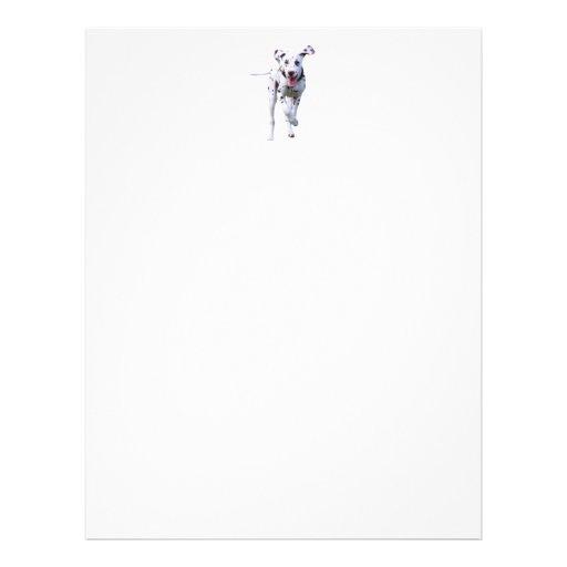 Dalmatian puppy dog letterhead, stationery
