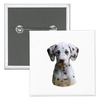 Dalmatian puppy dog photo 2 inch square button