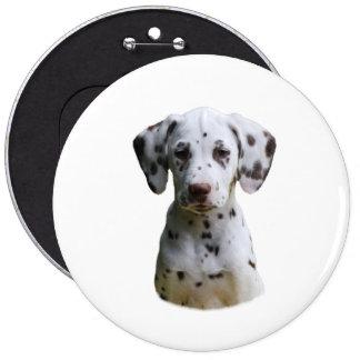 Dalmatian puppy dog photo button
