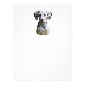 Dalmatian puppy dog photo custom flyer