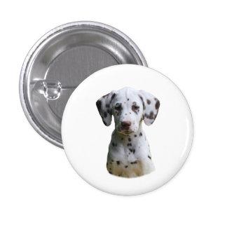 Dalmatian puppy dog photo pins