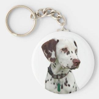 Dalmatian puppy keychain, gift idea basic round button keychain