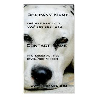 Dalmatian Resting Business Cards
