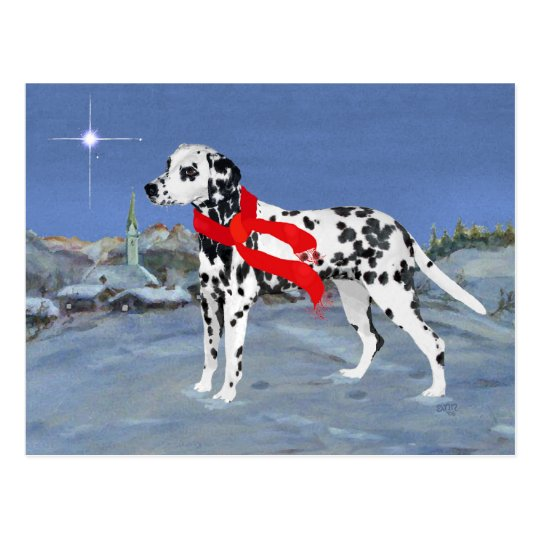 Dalmatian Winter Night Postcard