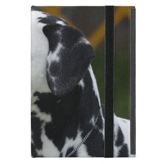 Dalmatian with Spots iPad Mini Cases